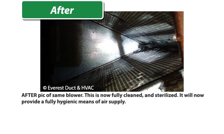 Tucson Everest Air HVAC residential after